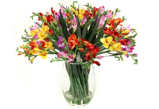 Imported Silk Flowers