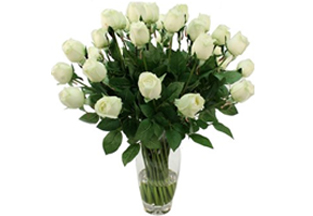 Imported Silky Florals White Roses